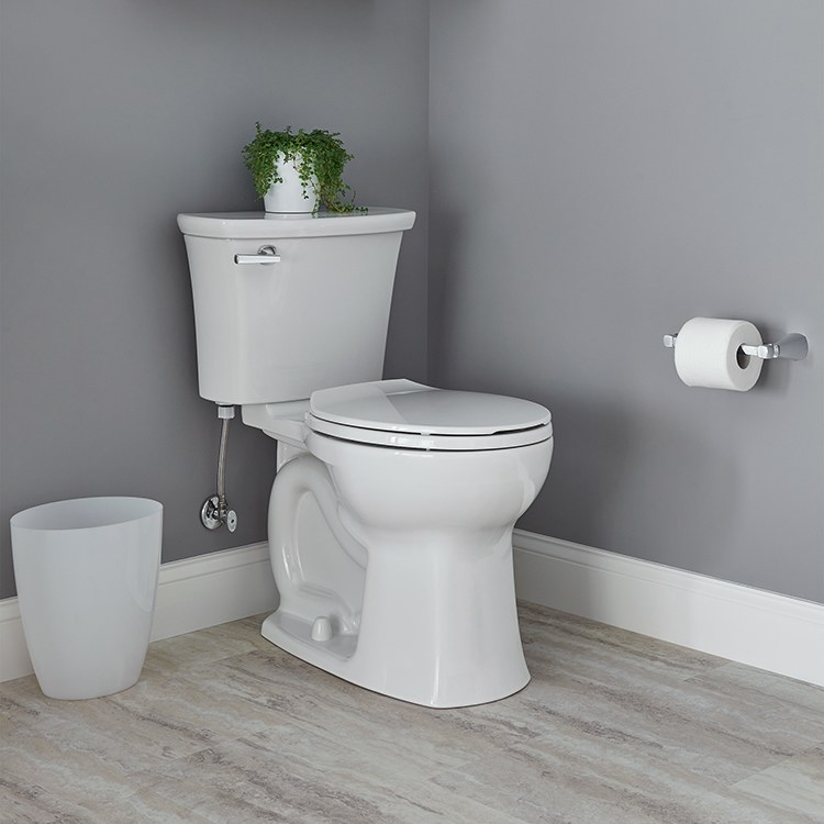American Standard 3519b101 Toilet Bowl F W Webb Online